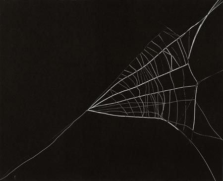 Arachnes Web (Untitled 12), 2006. Monotypi, 50x66 cm, Courtesy Martin Asbæk Projects, Foto: Anders Sune Berg