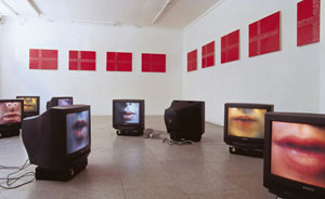 Election Day, 2001. Installation